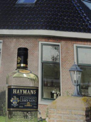 hayman gin